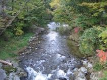 秋の五百川