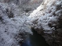 (冬)尾瀬戸倉冬1
