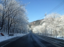 (冬)尾瀬戸倉冬2