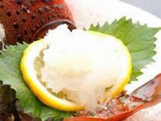 【期間限定】 旨い!!☆プリップリの伊勢海老「活き造り」お一人様一匹付&磯料理プラン
