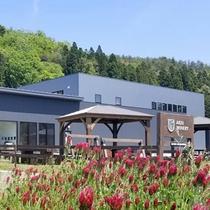 仙台秋保醸造所(秋保ワイナリー)…売店、試飲コーナー、カフェを併設。徒歩約10分。