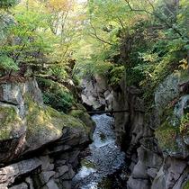 磊々峡(らいらいきょう)…当館から徒歩10分の奇岩が並ぶ峡谷。紅葉は10月下旬~11月上旬です。