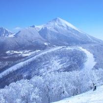 頂上からの景色は最高です