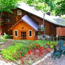 自然林に囲まれた森の中の小さなログハウス...バディです