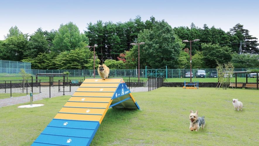 【ドッグラン】小型犬専用エリアとフリーエリアが分かれているので安心!各種アジリティも充実♪