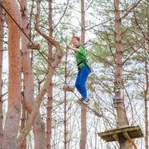 【ツリートレッキング】安全ベルトを着け、木々の間を渡り歩くスリル満点のアトラクション!