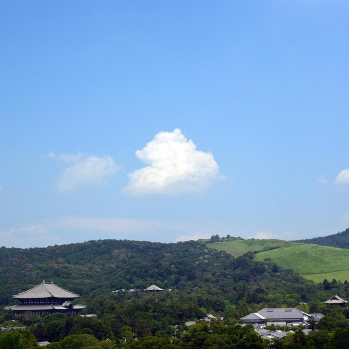 県庁屋上から若草山・東大寺方面