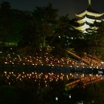 【奈良の行事】なら燈花会。幻想的なろうそくの灯り(8月)