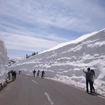 雪の回廊を行く!志賀草津高原ルート