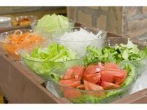 地元産の野菜を中心としたサラダバイキング!