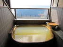 海を望む貸切展望露天風呂 その六(2名様用)チェックイン~17時まで(別料金2,700円)
