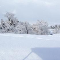 【冬の宿周辺】真っ白な雪に覆われた高田平野もお楽しみいただけます