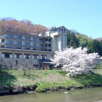 *春には桜が目の前に。川のせせらぎに耳をすませながら、お花見を♪