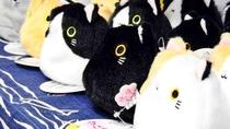 *【猫グッズ】1Fおみやげも猫グッズをたくさんご用意しております。