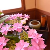 *【フロントロビー】季節の花々が癒しの空間を演出しております。