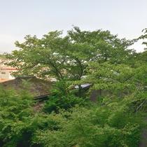 *【広申閣からの眺め一例】お部屋からは庭園の木々や小径をご覧いただけます。自然を楽しめる眺めです