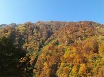 秋の渓谷の(一部)