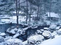 本館からの庭園風景
