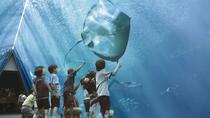 【アクアマリンふくしま】東北最大級の楽しく学べる体験型水族館。