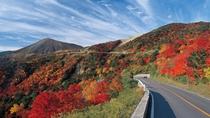 【磐梯吾妻スカイライン】高湯温泉と土湯峠を結ぶ全長約29kmで最高標高1,622mの観光道路