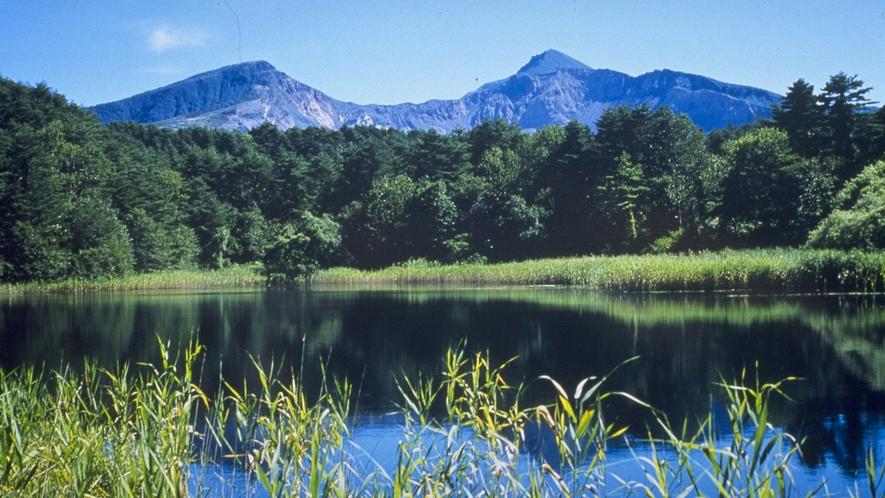 【五色沼】見るたびに色が変わる神秘の湖沼群
