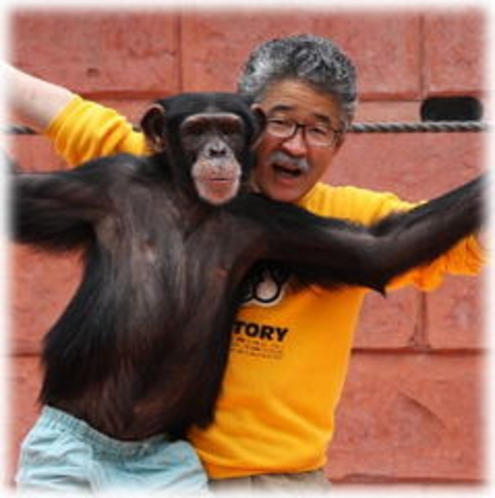 しゃぼてん公園 チンパンジー