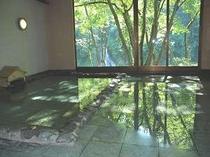 2. 朝はすがすがしい深緑が映りこむお風呂