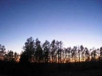 宿の庭の夕暮れ