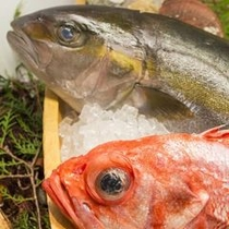 新鮮なお魚を選んでいただき、お造りにします!