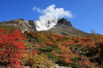 茶臼岳(秋)②