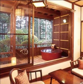 源泉かけ流しの露天風呂付き和室10畳(1階)