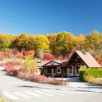 【秋】敷地内の紅葉がとても素晴らしい時期になります。