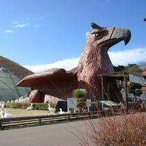 【シャボテン動物公園】車で5分!伊豆高原の人気テーマパーク