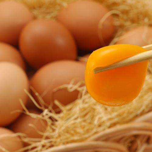 ■有機卵イメージ