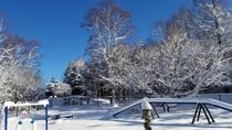 青空と雪のドッグラン