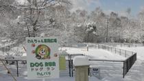 雪のドッグラン入口