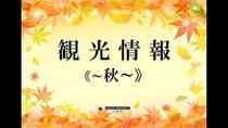 ■秋の観光情報■