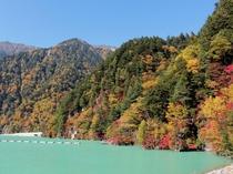 ■高瀬渓谷■
