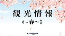■周辺観光情報 ~春~■