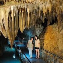 観光 玉泉洞「絞り幕」