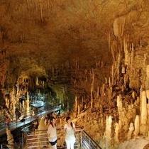 観光 玉泉洞「東洋一洞」