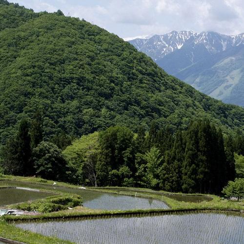 *豊かな自然が広がります(1)