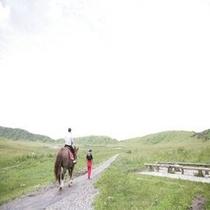 【観光スポット】草千里 乗馬体験