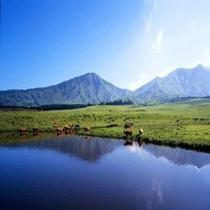【観光スポット】草千里