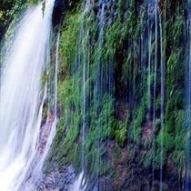 【観光スポット】白糸の滝