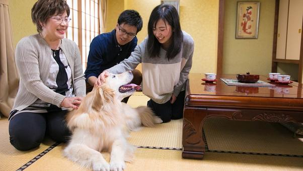◆ペット和室◆ちょっと広め♪10畳〜 ワンちゃんもリラックス