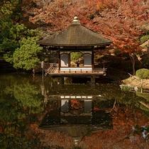 和歌山城公園内 紅葉谷庭園