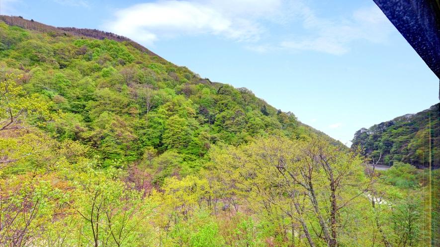 *当館からの眺望/四季移ろいを感じながらご滞在をお楽しみいただけます。