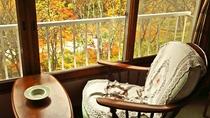 *本館和室(バス無・トイレ無)のお部屋からの景色。渓流のせせらぎと山の四季をお楽しみいただけます。