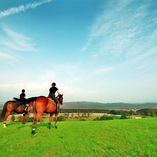 ■ファーム乗馬風景